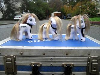 BRAY Ponies ii