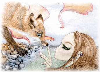 The Mermaid and the Fox