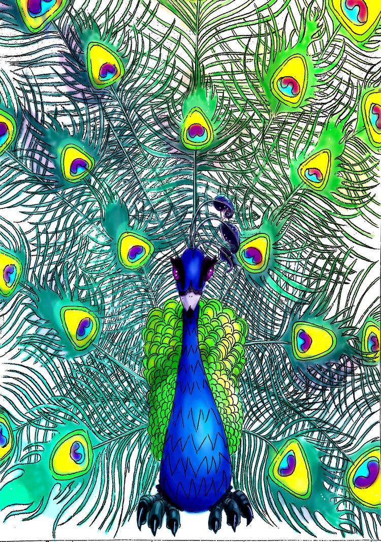 Peacock by noelle23