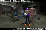 Spy and Waluigi