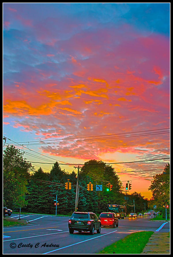 Chasing Sunsets In Suburbia by CecilyAndreuArtwork