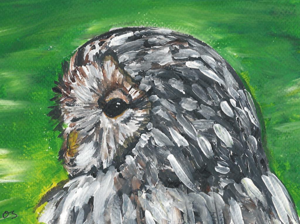 Owl 2. by Oc-b