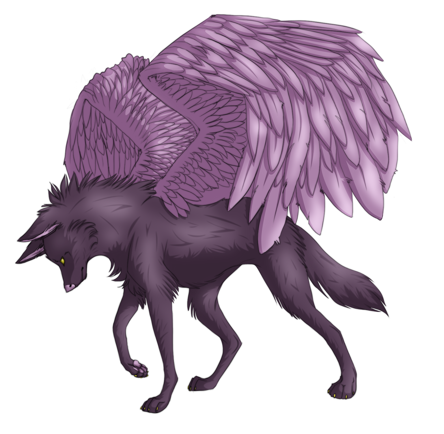 Good Ideas For Bedrooms Colored Winged Wolf Drawings