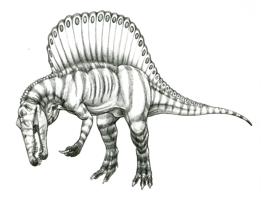 mad spinosaurus coloring pages - photo#46