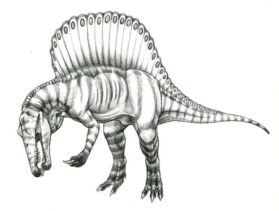 Spinosaurus Aegyptiacus by TheIncredibleHibby on DeviantArt