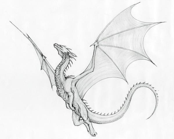 Ciruelos Dragon by Beast3 on DeviantArt