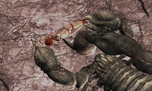 In the Claws of the Scorpion -Angle 1-