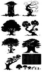 Tree Silhouettes and Heights