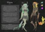 Haon Race Sheet