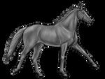 Horse greyscale || Free