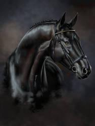 Realistic portrait: Black horse