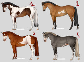 Realistic horse adoptables | 2/4 available