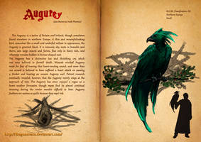 Augurey - Fantastic Beasts Book by DragonsTrace