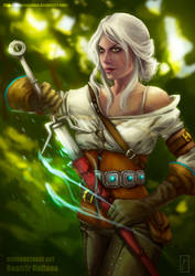 Before the battle. - Ciri - The witcher III
