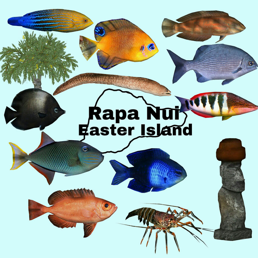 Topics tagged under eel on User - Made Creations Ii__rapa_nui_by_thehuialord-dadl0cj
