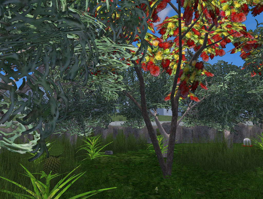 Topics tagged under foliage on User - Made Creations Hawaii_rainforest_by_thehuialord-dags50s