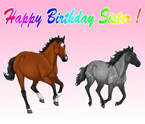 Happy Birthday Sister !