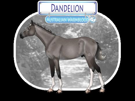 Dandelion - SOLD