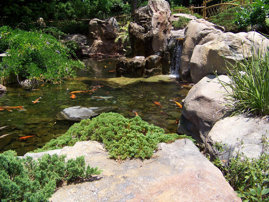 koi pond in epcot 39 s japan by dream finder on deviantart