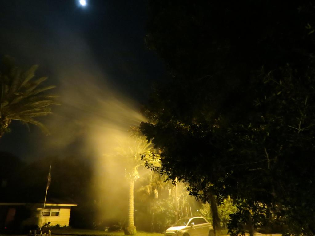 Halloween Fog by Dream-finder