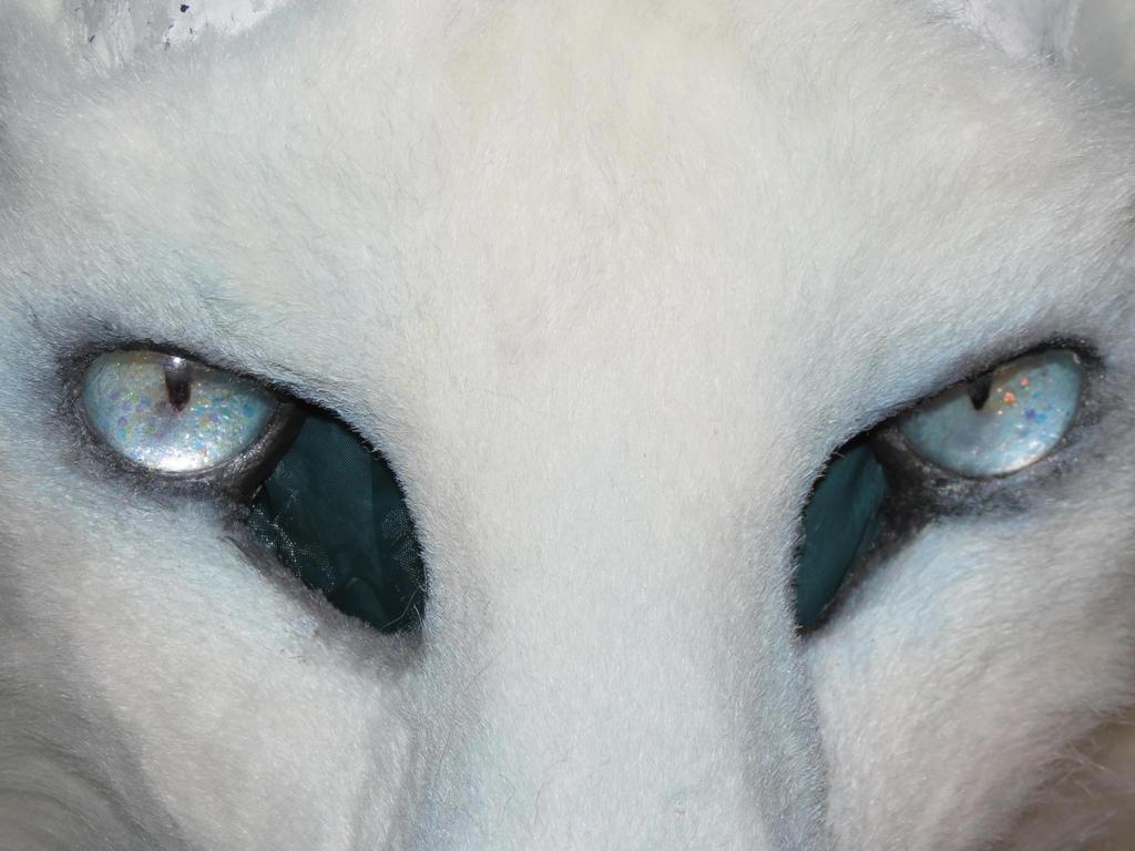 Snow Dragon Eyes by Dream-finder