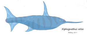 Xiphognathus by Concavenator
