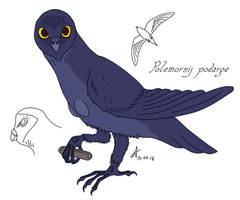 The Harpy by Concavenator