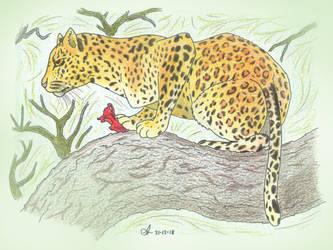 Leopard by Concavenator