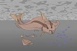 Filter-feeding flatfish (for Nuclearzeon2)