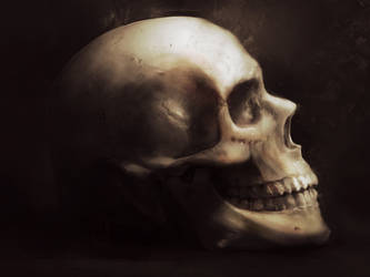 skull by LCorneliussen