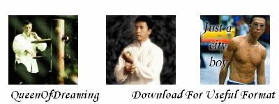 Donnie Yen Icons