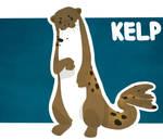 Kelp Reference