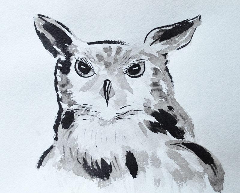 Owl 002 by Irik77