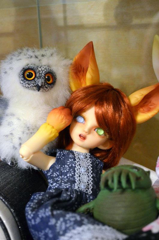 What dream of snowy owl 007 by Irik77