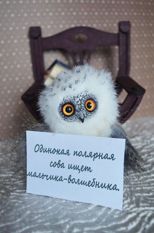 What dream of snowy owl 004 by Irik77