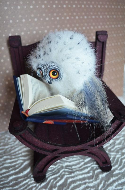 What dream of snowy owl 002 by Irik77