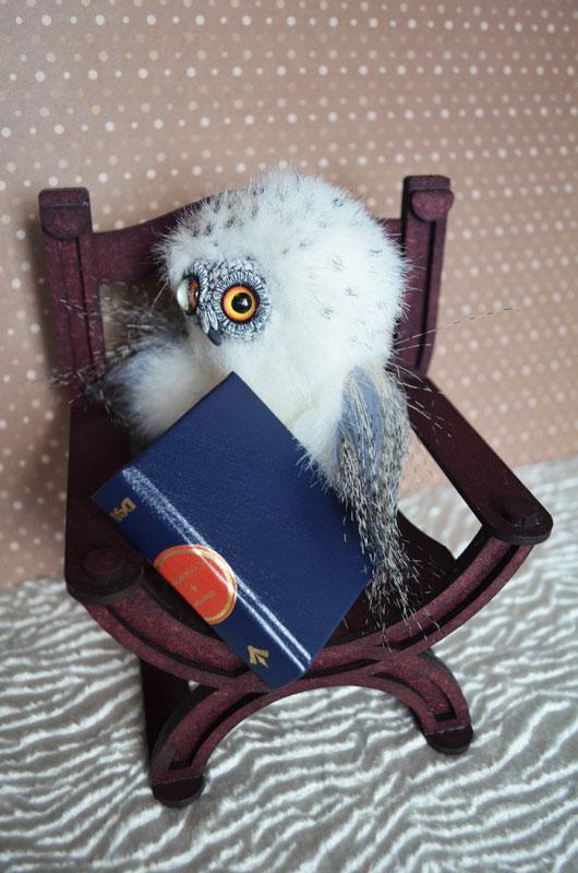 What dream of snowy owl 001 by Irik77