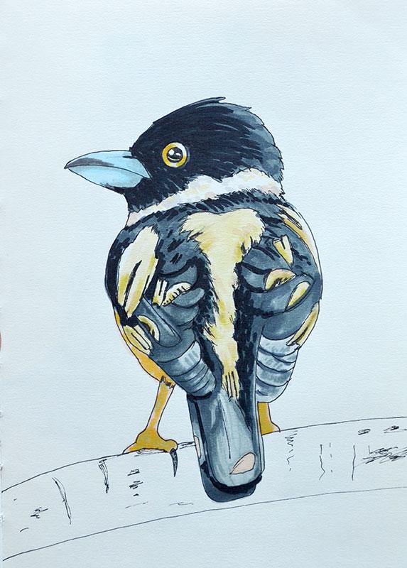 Bird 001 by Irik77