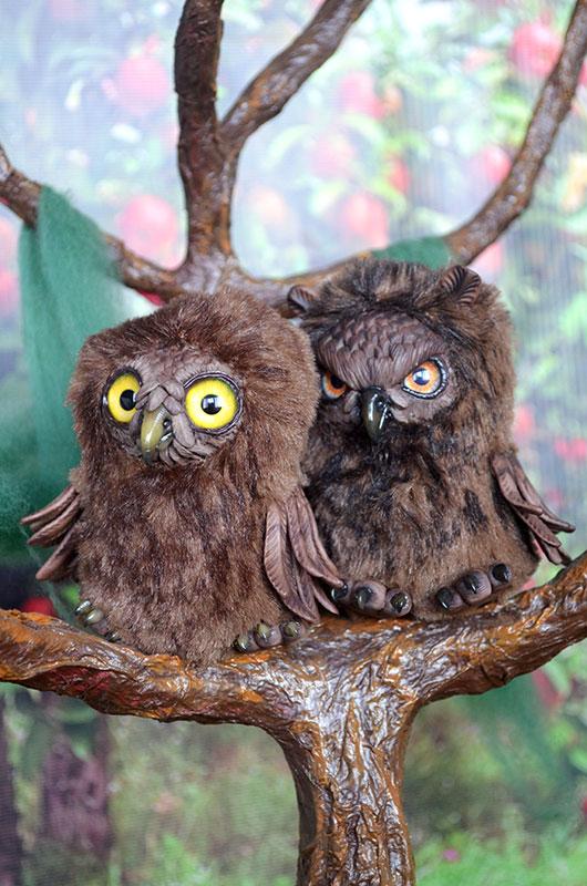 Owls 001 by Irik77