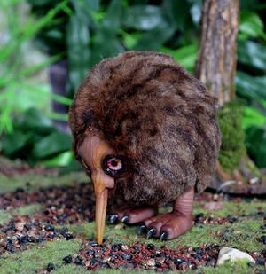 Kiwi bird 002