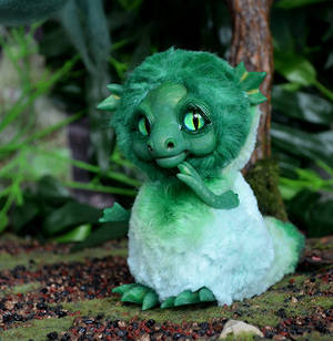 Green Sea Dragon 001