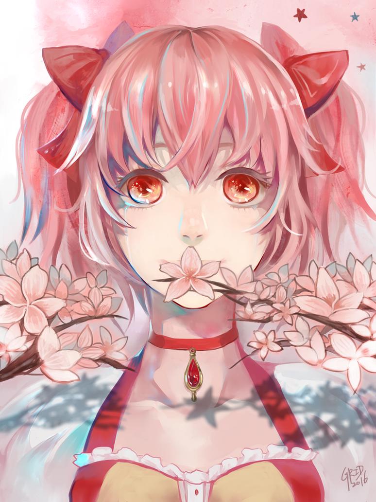Sakura Madoka by GRIDyo