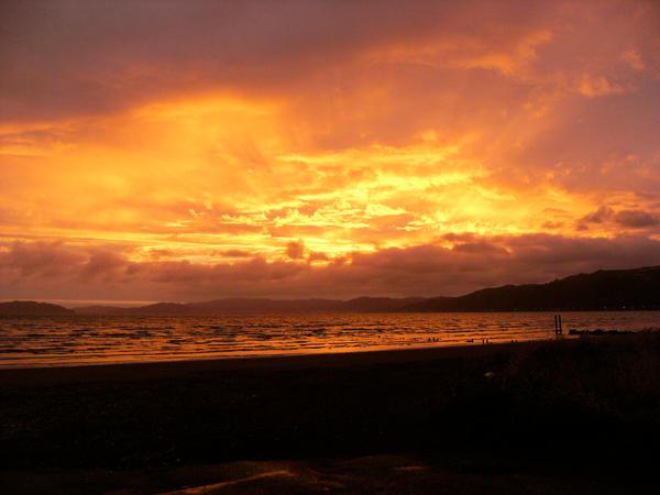 Petone Sunset
