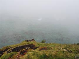 Fog by mackilvane