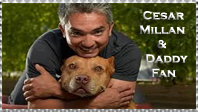 Cesar Millan and Daddy fan by VegetasLittleLover