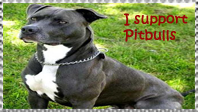 I support Pitbulls stamp by VegetasLittleLover