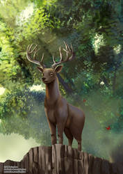 Deer by yinghuo