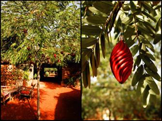 Christmas in Mali by tiramcsr