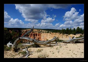 Deadwood by garai