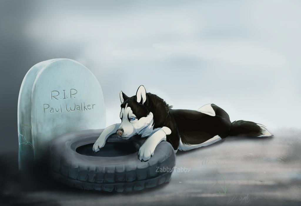 See You Again by ZabbyTabby